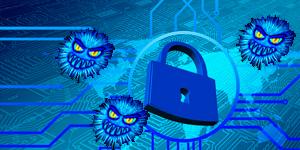 informatica-vinas-seguridad-web2