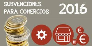 Subvenciones-comercio-online-software-Informatica-Vinas