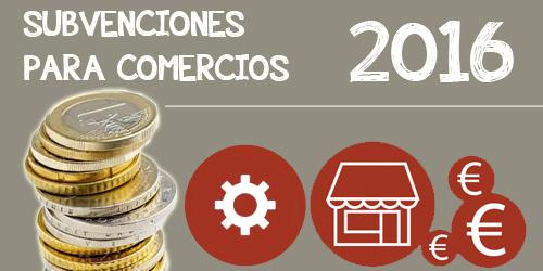Subvenciones-comercio-online-software-Informatica-Vinas500